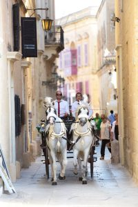 Horse and Carriage for a Wedding in Malta