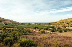View from venue in Malta